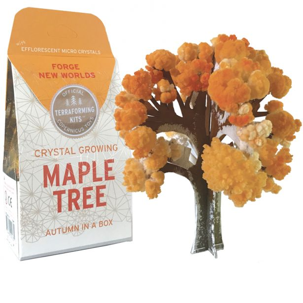Crystal Growing:  MAPLE TREE