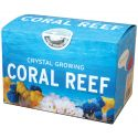 Crystal Growing: Coral Reef